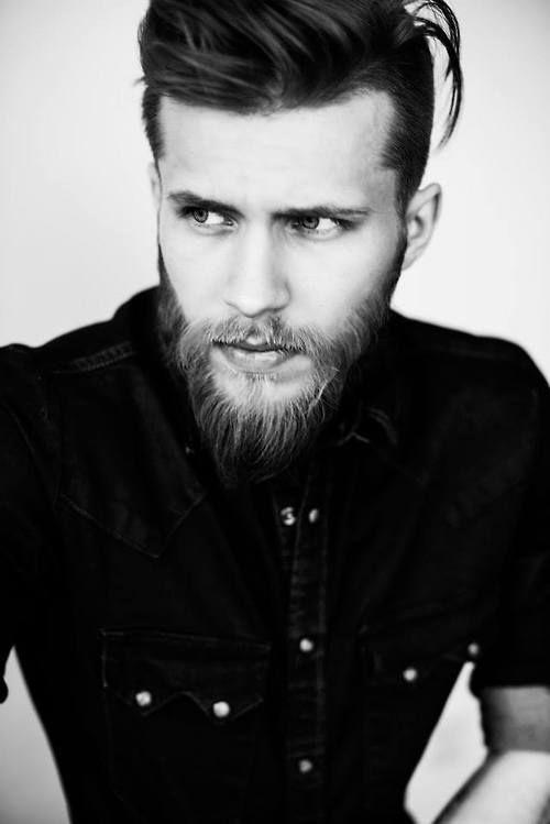 Mesdames les barbus sont les plus beaux voil ces photos qui vont vous donn - Les danois sont beaux ...