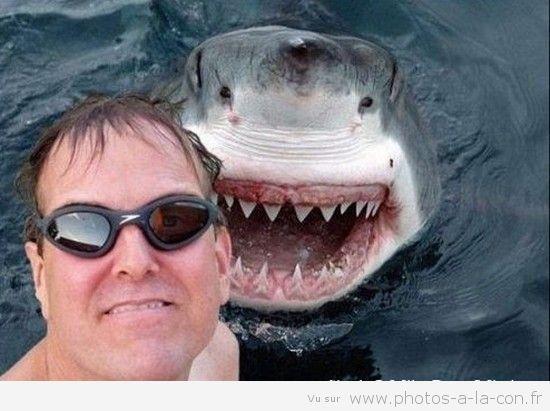 Regardez les selfies les plus drôles que vous pouvez rencontrer-5