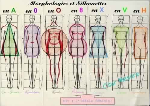 morphologie-robe