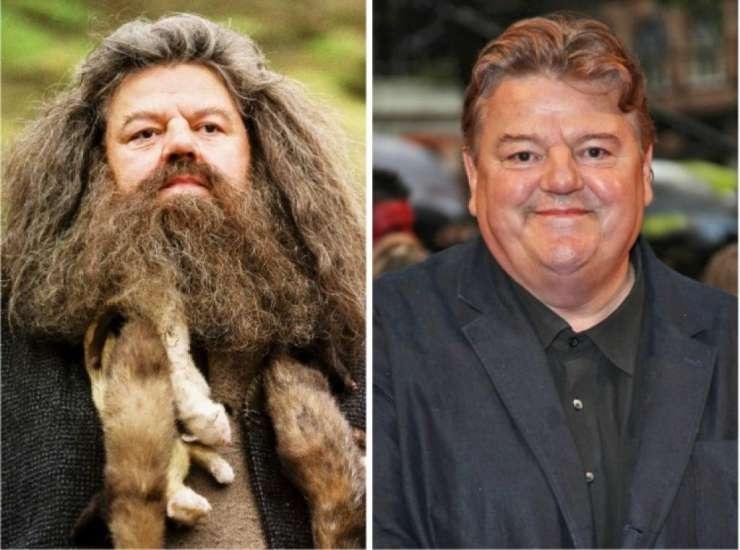 les Stars de Harry Potter 15 Ans après 6